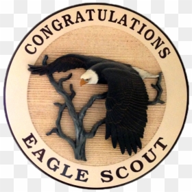 Eagle Scout Service Project Boy Scouts of America World Scout Emblem  Scouting, medal, gold png | PNGEgg