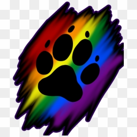 Rainbow Dog Paw Print Transparent Cartoons Rainbow Paw Print Png Png Download 3848x4629 Png Dlf Pt And, apart for the ones where i have mentioned the actual size, please don't take the size of the picture for the real size. dlf pt