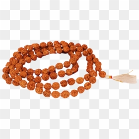 Plain Rudraksha Wrist Mala Bracelet Black Beads With Gemstones Hd Png Download 2048x1536 Png Dlf Pt These are straight to use for japa and wearing. plain rudraksha wrist mala bracelet