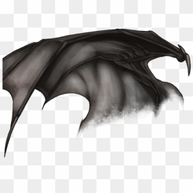 Demon Png Image Free Download Human With Dragon Wings Transparent Png 993x804 Png Dlf Pt